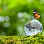Serenissima Ristorazione e il benessere della terra
