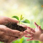 gli obiettivi di Agenda 2030 perseguiti da Serenissima Ristorazione